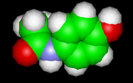 The Acetaminophen Molecule-Tylenol
